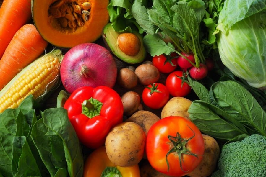 ダイエットの食事/必要な栄養素とは?